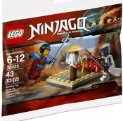 LEGO Ninjago CRU Masters Training Grounds 30425