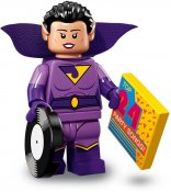 LEGO Twin (Jayna) Batman2 7102013