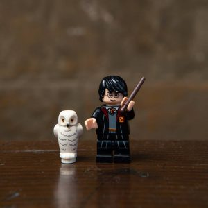 LEGO Harry Potter , Harry Potter  710221